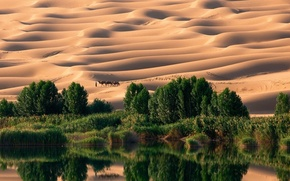 Картинка песок, вода, оазис