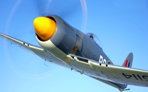 Картинка самолет, истребитель, пропеллер, Hawker Sea Fury
