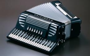 Обои Гармоника, ВОЗДУХ, аккордеон, ИНСТРУМЕНТ, гармошка, баян, КЛАВИШИ, КНОПКИ