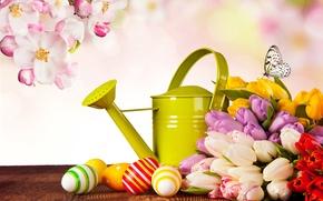 Картинка фото, Цветы, Бабочка, Тюльпаны, Пасха, Яйца, Праздники