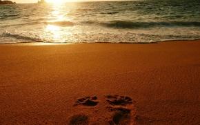 Обои песок, море, следы, океан