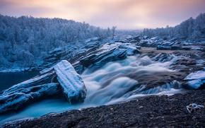 Картинка лес, речка, Швеция, Sweden, первый снег, winter is coming