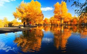 Картинка осень, деревья, парк, река, Китай