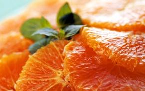 Обои Мякоть, апельсин, еда