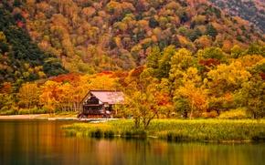 Картинка осень, трава, деревья, горы, дом, река, берег
