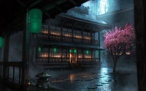 Картинка дождь, дерево, The Secret World