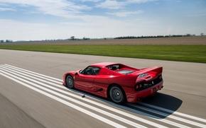 Обои красный, автомобиль, F50, скорость, speed, car, Ferrari