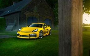 Картинка Porsche, Cayman, Grass, Front, Color, Yellow, Summer, Supercar, GT4