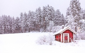 Картинка зима, лес, небо, снег, деревья, природа, Норвегия