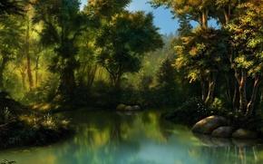 Картинка лес, вода, камни, болото, чаща, арт