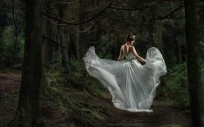 Картинка лес, платье, азиатка, невеста, свадебное платье