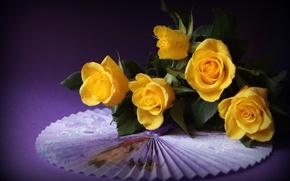 Обои розы,  жёлтые,  веер,  фиолетовый фон