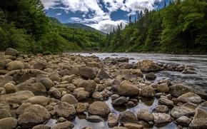 Картинка лес, небо, горы, река, камни
