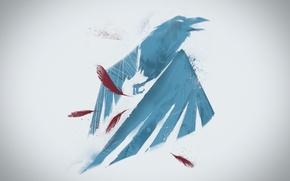 Обои фон, птица, рисунок, крылья, Infamous: Second Son