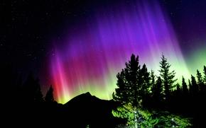 Картинка звезды, деревья, горы, ночь, сияние, силуэт