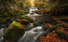 Картинка осень, лес, листья, река, камни, водопад, мох, Швейцария, каскад, Switzerland, ущелье Аройзе, Val-De-Travers, Areuse Gorge