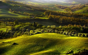 Обои холмы, лес, осень