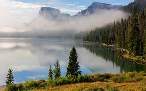 Картинка лес, деревья, горы, озеро, дымка