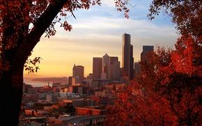 Картинка осень, листья, city, здания, Город, красные, red, trees, autumn, leaves
