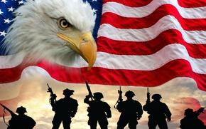 Обои птица, флаг, солдаты