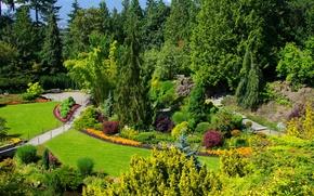 Обои красота, сад, Канада, Ванкувер, солнечно, Queen Elizabeth Garden