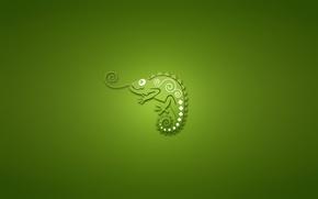 Картинка хамелеон, минимализм, зеленый фон, chameleon