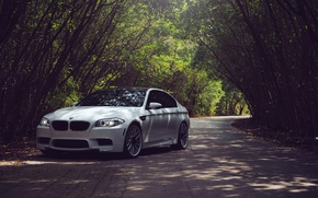 Картинка White, F10, Белый, БМВ, Дорога, BMW