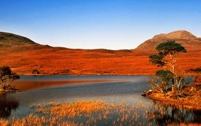 Картинка небо, трава, деревья, горы, озеро, остров, панорама