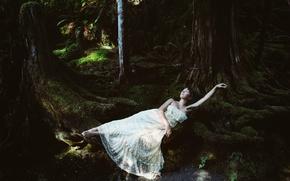 Картинка лес, девушка, деревья, отдых, мох