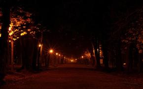 Картинка дорога, свет, деревья, ночь, огни, города, дерево, настроение, улица, романтика, дороги, вечер, фонари, фонарь, аллея, ...
