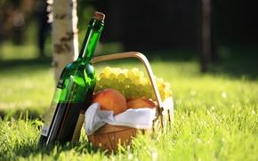 Картинка салфетка, берёза, персики, вино, красное, боке, пикник, трава, виноград, корзина