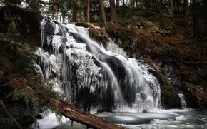 Картинка зима, лес, водопад, лёд, Connecticut, Woodbury, Nonnewaug Falls