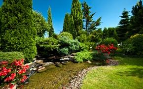 Обои парк, ручей, камни, цветы, трава, кусты
