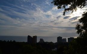 Картинка море, небо, лучи, деревья, парк, сочи