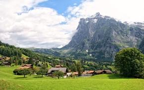Обои Швейцария, Grindelwald, поля, горы, дома, поселок, деревья, скалы, облака