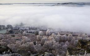 Картинка поле, пейзаж, туман, долина