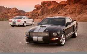 Картинка Shelby, mustang, gt500