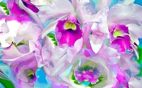 Обои цветы, лепестки, рендеринг, природа