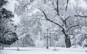 Картинка холод, зима, снег, деревья, скамейка, лампа, площадь, фонтан