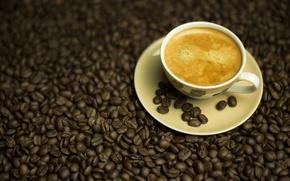 Обои Кофе, напиток, зёрна