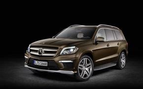 Картинка Mercedes Benz, Bluetec, GL 350