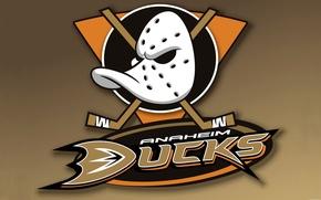 Картинка Игра, Спорт, Фон, Маска, Логотип, NHL, Хоккей, Клюшка, Anaheim Ducks