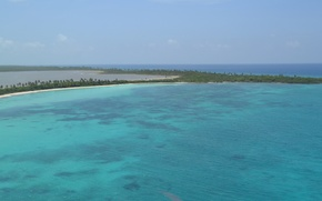 Картинка море, пальма, пальмы, доминикана, доминиканская республика