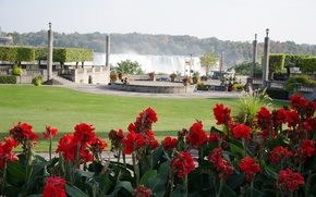 Картинка цветы, парк, водопад, Ниагара, красные, red, nature, park, flowers, waterfall, Niagara