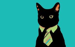 Картинка минимализм, галстук, Кот, смотрит
