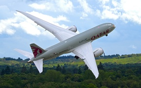 Картинка лес, небо, самолёт, взлет, реактивный, пассажирский, Dreamliner, Boeing 787, двухдвигательный, широкофюзеляжный