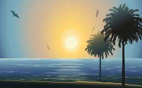 Картинка море, солнце, закат, пальмы, чайки