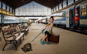 Картинка кошка, поезд, вагоны, перрон, девочка, чемодан