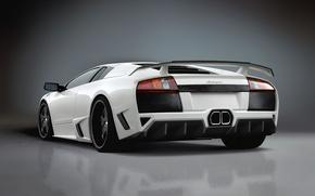 Обои авто, белый, Lamborghini