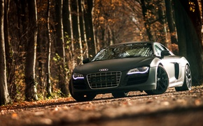Картинка Audi, ауди, спорткар, black, front, V10